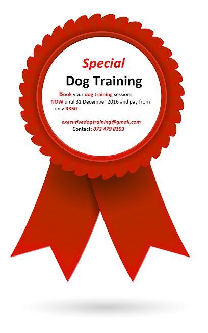 Executive Dog Training Specials 2016