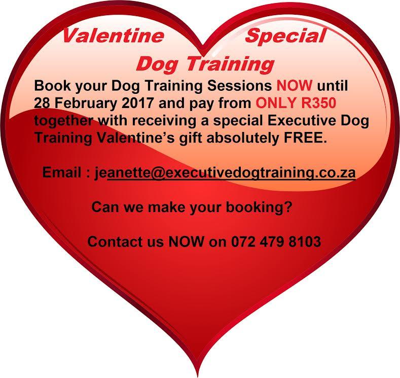 Executive Dog Training Special